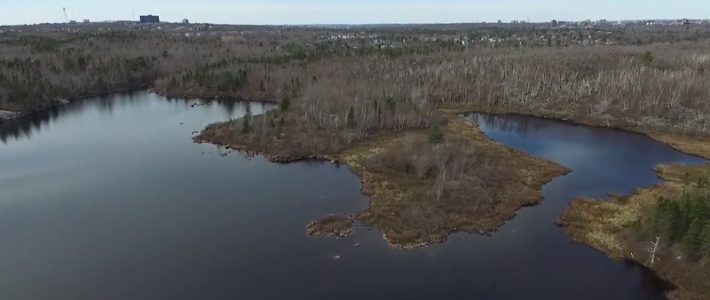 Bird's eye view of lake