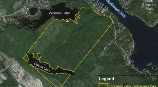 Update on Williams Lake/Purcells Cove Backlands Park