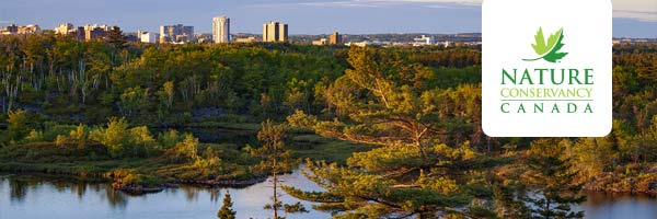 Join NCC for the City Nature Challenge at the future Halifax Wilderness Park on April 27